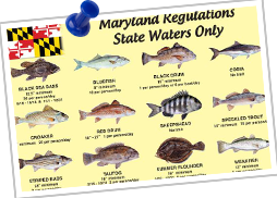maryland regulations state waters only postcard